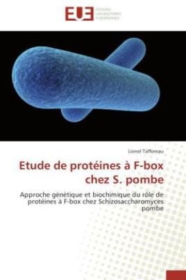 Etude de protéines à F-box chez S. pombe