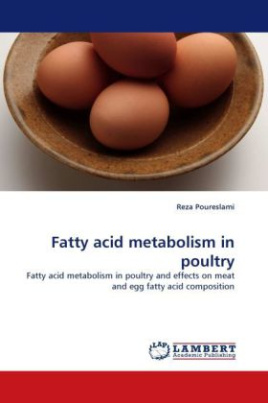 Fatty acid metabolism in poultry