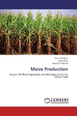 Maize Production