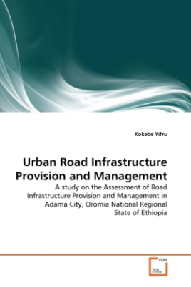 Urban Road Infrastructure Provision and Management