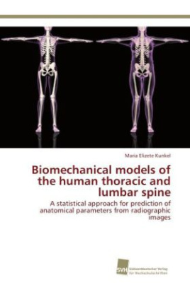 Biomechanical models of the human thoracic and lumbar spine