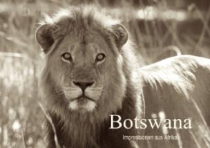 Botswana Impressionen aus Afrika (Posterbuch DIN A2 quer)