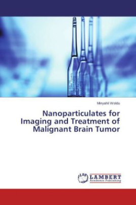 Nanoparticulates for Imaging and Treatment of Malignant Brain Tumor