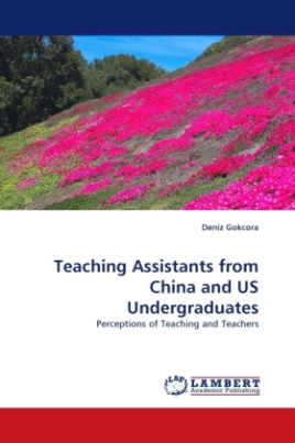 Teaching Assistants from China and US Undergraduates