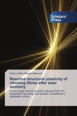 Reactive structural plasticity of climbing fibres after laser axotomy