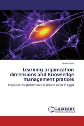 Learning organization dimensions and Knowledge management pratices