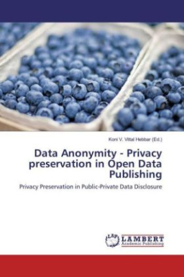 Data Anonymity - Privacy preservation in Open Data Publishing
