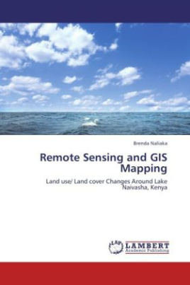 Remote Sensing and GIS Mapping