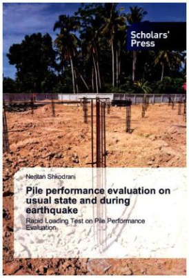 Pile performance evaluation on usual state and during earthquake