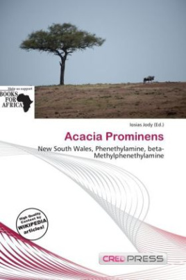 Acacia Prominens