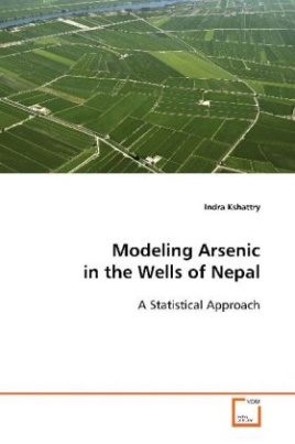 Modeling Arsenic in the Wells of Nepal