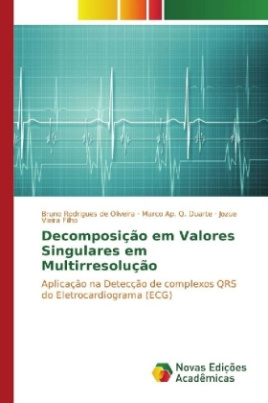 Decomposição em Valores Singulares em Multirresolução