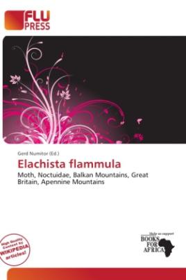 Elachista flammula