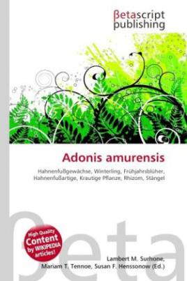 Adonis amurensis