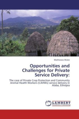 Opportunities and Challenges for Private Service Delivery: