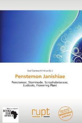 Penstemon Janishiae