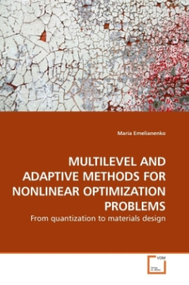 MULTILEVEL AND ADAPTIVE METHODS FOR NONLINEAR OPTIMIZATION PROBLEMS