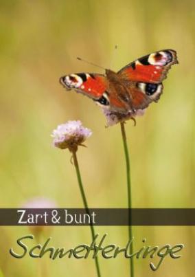 Zart & bunt: Schmetterlinge (Posterbuch DIN A3 hoch)