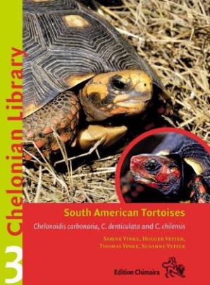 South American Tortoises