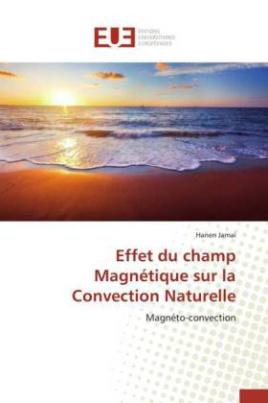 Effet du champ Magnétique sur la Convection Naturelle